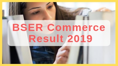 rbse 12th commerce result 2019