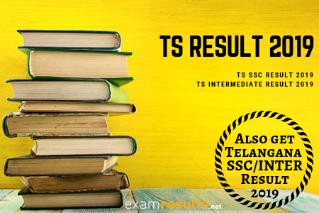 ts board results 2019
